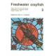 Freshwater Crayfish v.3